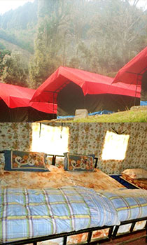 Camp O Royale, Kanatal